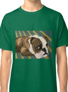 Brown and White Bulldog Lying, Blue & Yellow Back Classic T-Shirt