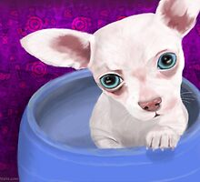Digitally Painted Chihuahua Puppy in a Jar by ibadishi