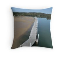 Clean Beach Challenge, 2007. What the assessor saw.  Throw Pillow
