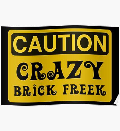 Caution Crazy Brick Freek Sign Poster