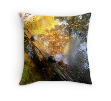 3 Turtles Throw Pillow