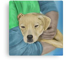Blond Dog is Being Cradled by a Person Canvas Print