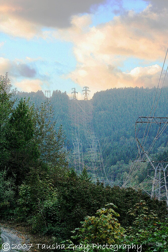 Breathtaking Powerline  by Tausha