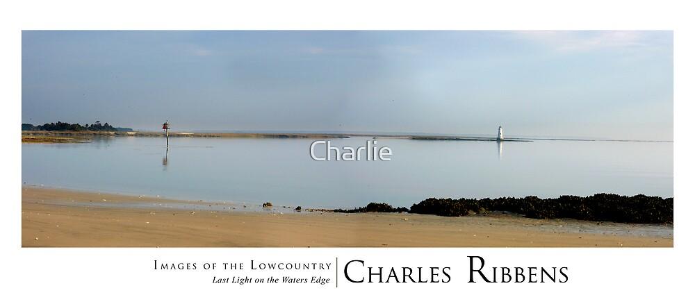Cockspur Island Lighthouse by Charlie