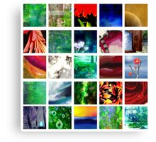 Blocks of Color Canvas Print