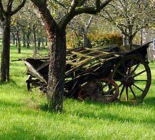 Retired Cider Wagon.............. by lynn carter