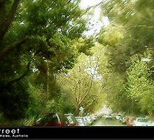 A Tree Lined Street by Katrina Price