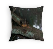 caught a creepy squirrel with his eye on me  aberdeen cemetary Throw Pillow