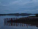The Long Forgotten Wharf by Darlene Ruhs