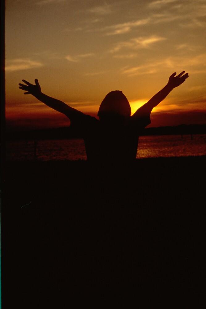 I'm Free by Susan Zohn