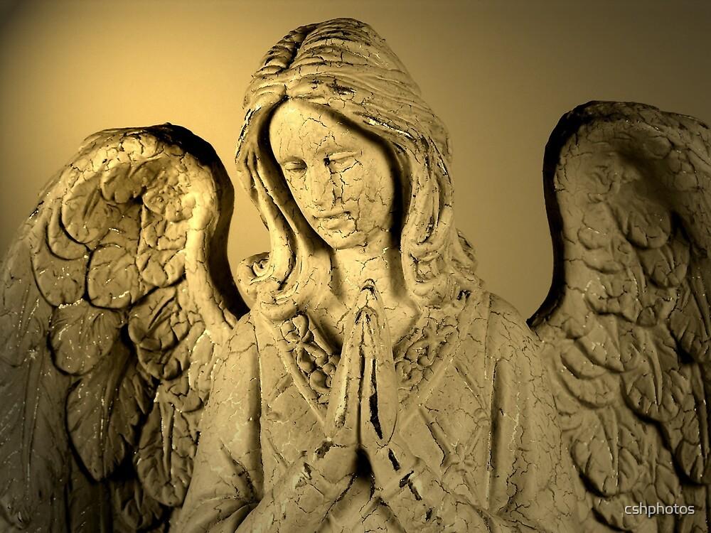 Praying Angel by cshphotos