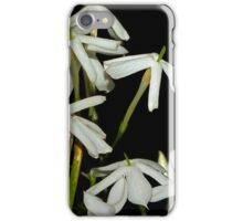 Flowers of the Scented Jasmine iPhone Case/Skin