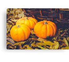 Three little pumpkins, autumn leaves and a basket Canvas Print