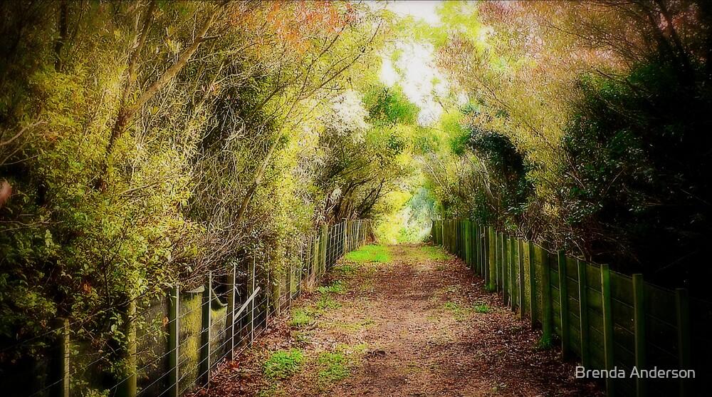 secret entrance by Brenda Anderson