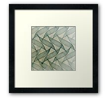 Delicate Screen II Framed Print