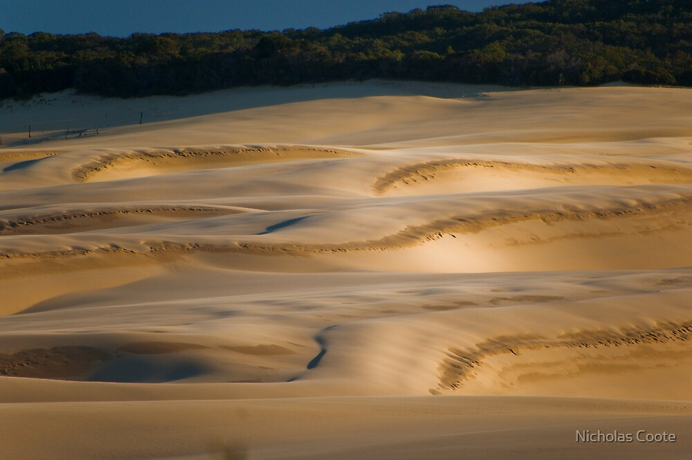 The Dunes by Nicholas Coote