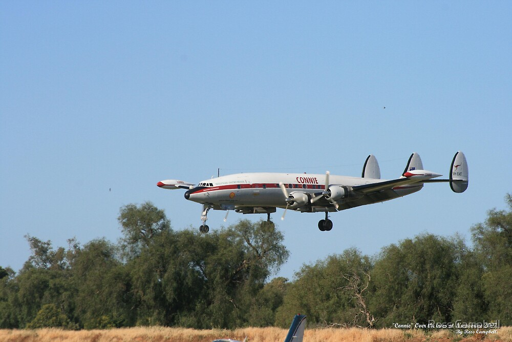 """Connie"" Over the trees at Narromine. by Ross Campbell"