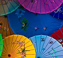 Umbrellas by Nick Alpin