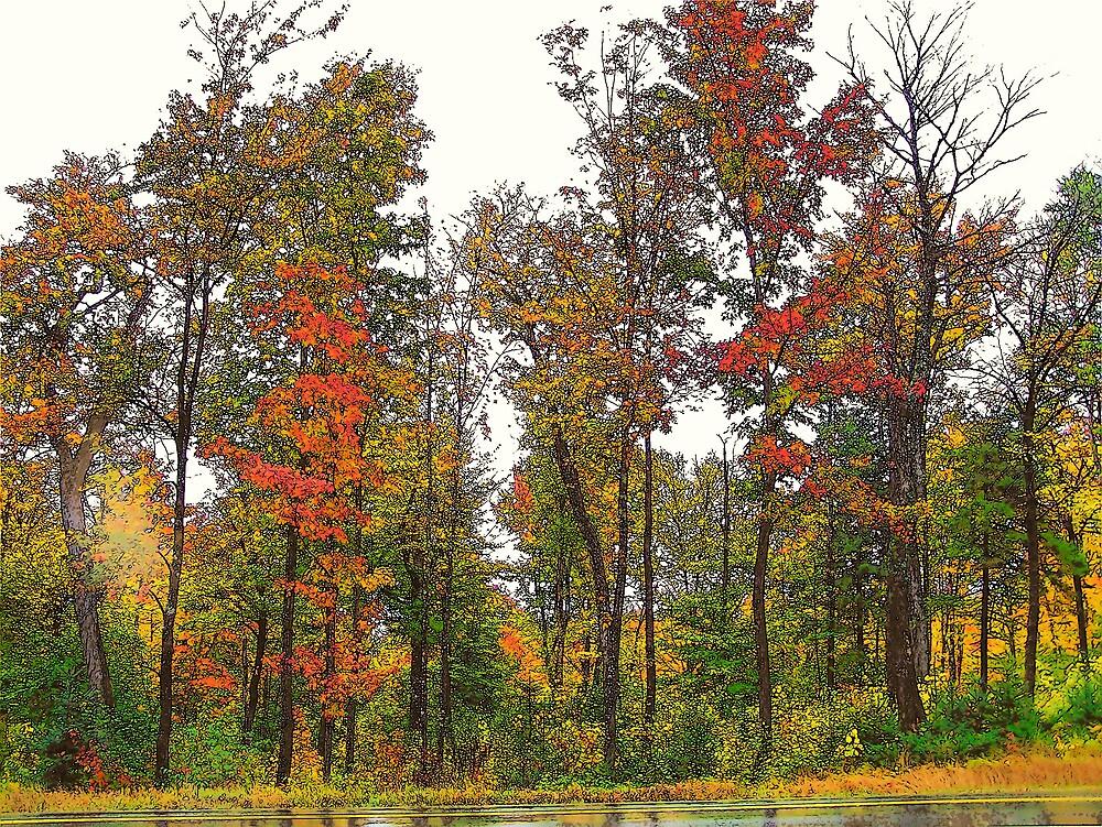 Road Side Autumn by Gene Cyr