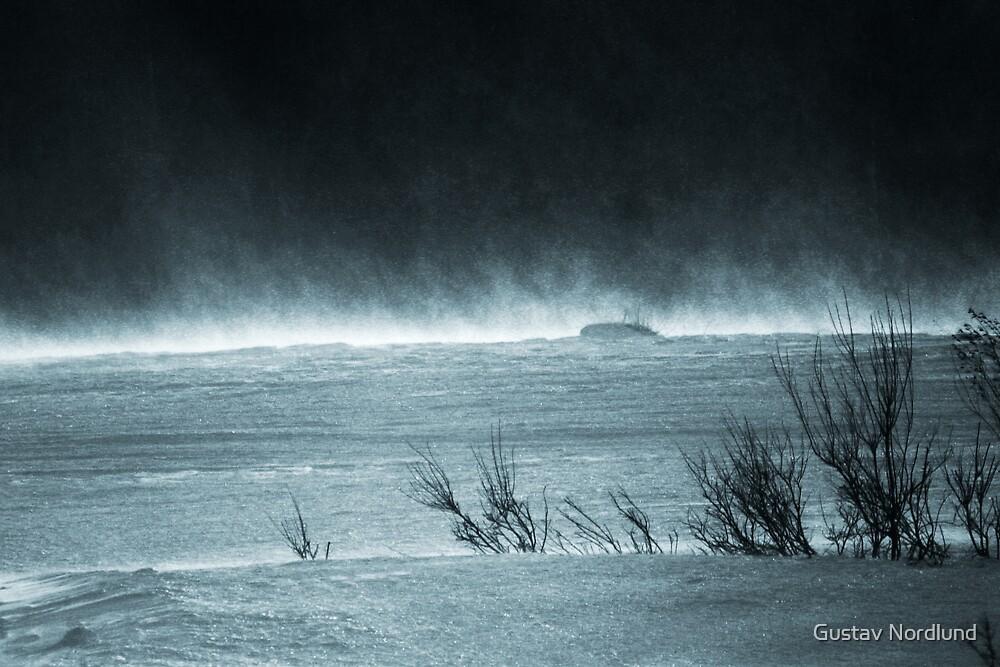 Cold Winds by Gustav Nordlund