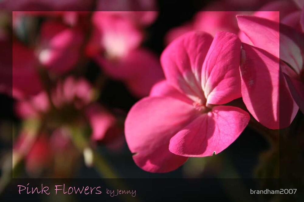 Pink Flowers by brandham2007
