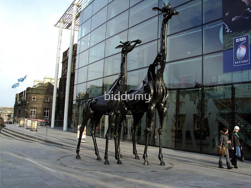Giraffes near Omni Centre, Edinburgh by biddumy