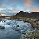 A Morning To Remember by Anders Naesset