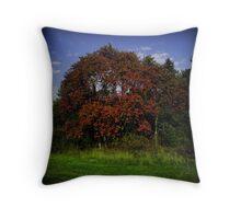 Natural RGB Throw Pillow