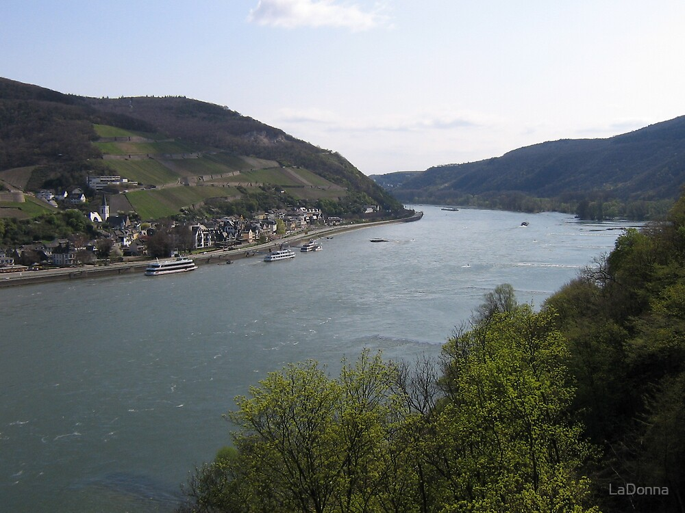 Overlooking the Rhine by LaDonna