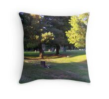 last days light Throw Pillow