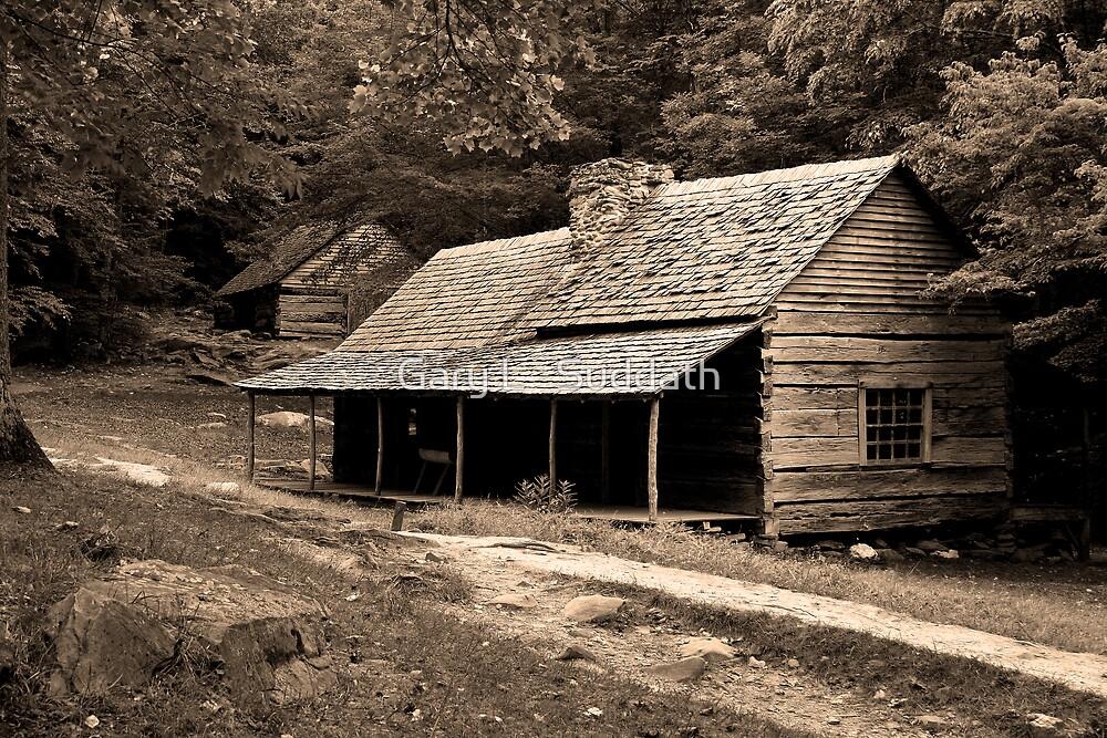 Noah 'Bud' Ogle Place by Gary L   Suddath