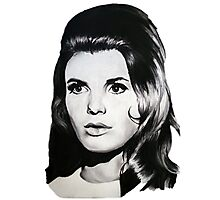 Katharine Ross The Graduate Chalk Drawing Photographic Print