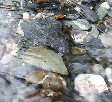 River Rocks by JenniferDAdkison