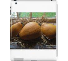 November iPad Case/Skin