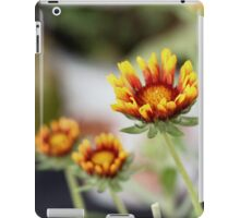 Flower  Fiesta iPad Case/Skin