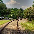 Railroad Tracks in Conway by TJ Baccari Photography