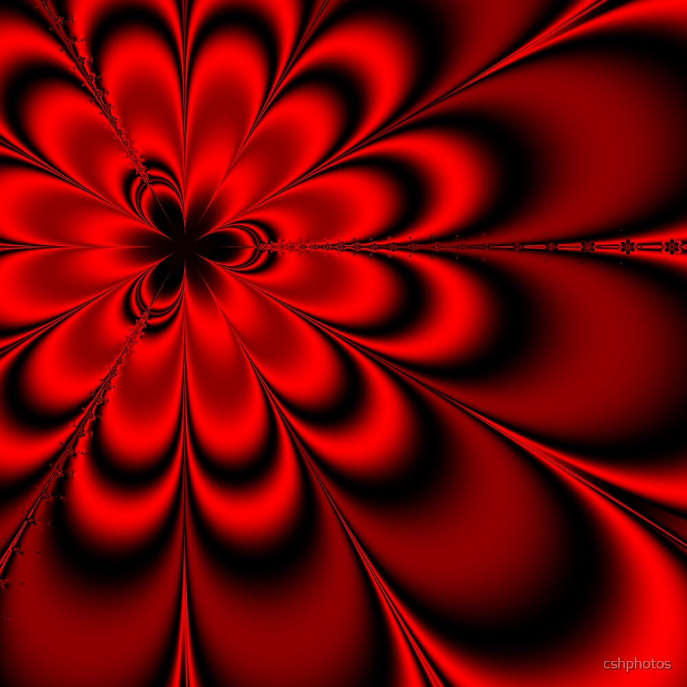 Red Floral Fractal by cshphotos
