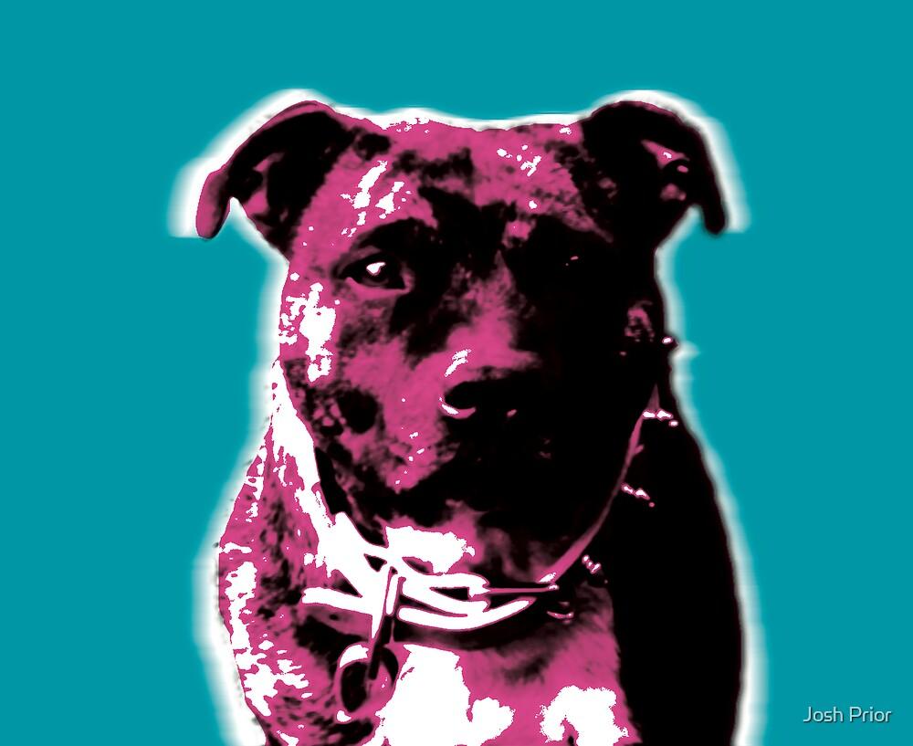 TOP DOG - POP DOG by Josh Prior