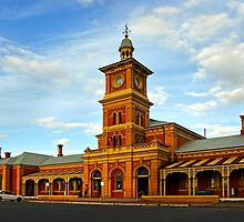 Albury Railway Station by Darren Stones