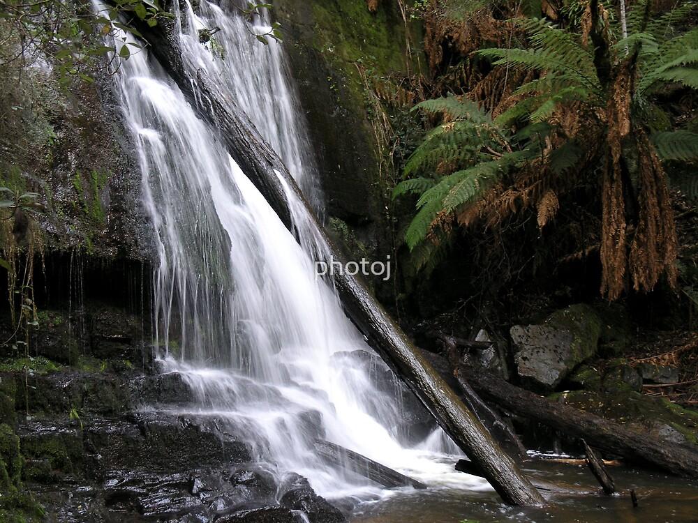 Tasmania Lilly Falls by photoj