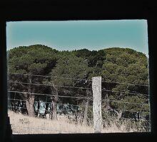 Farm through a window by Cooper