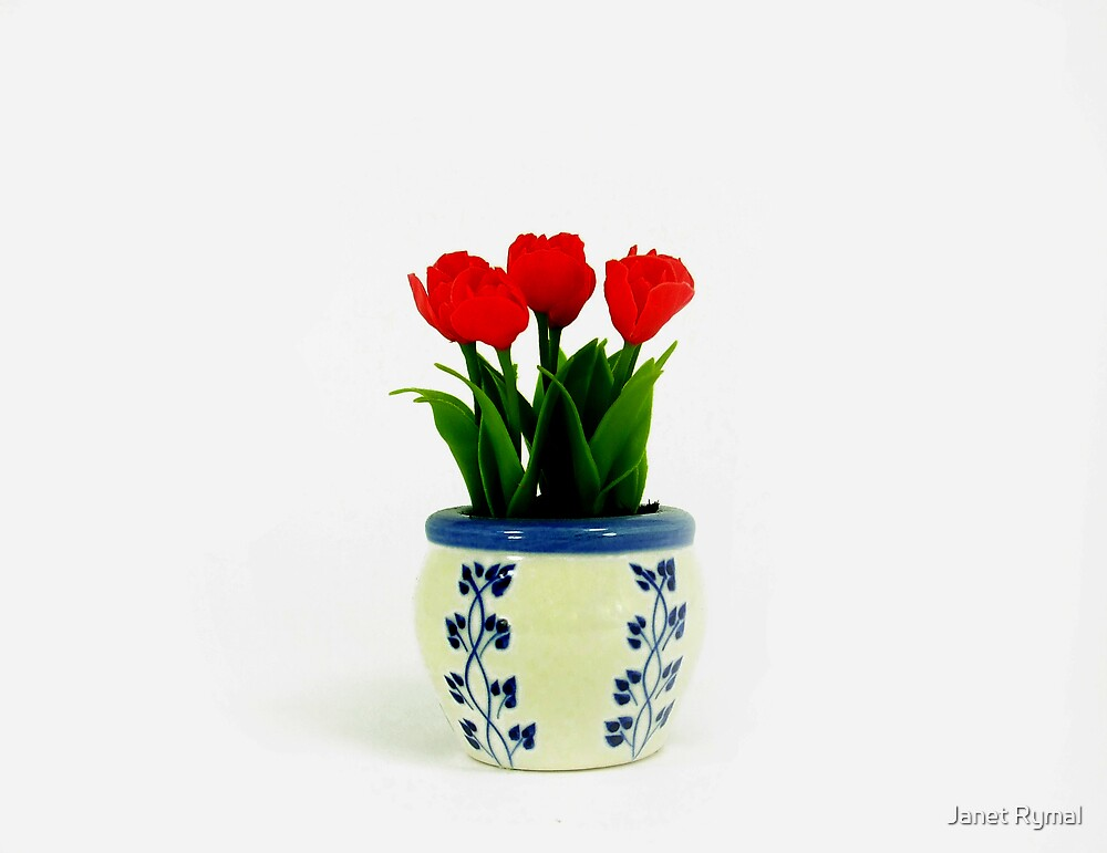 Tiny Tulips by Janet Rymal