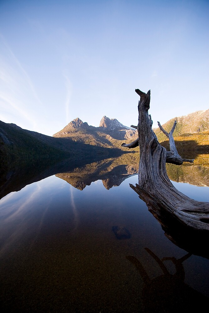 Cradle Mountain by David Conte