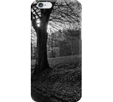 The End Of Autumn iPhone Case/Skin