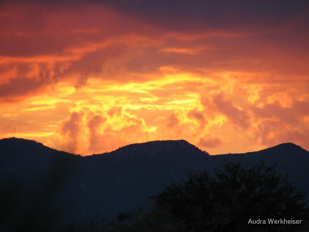 Arizona Sunset by Audra Werkheiser