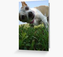 Whatcha doin? Greeting Card