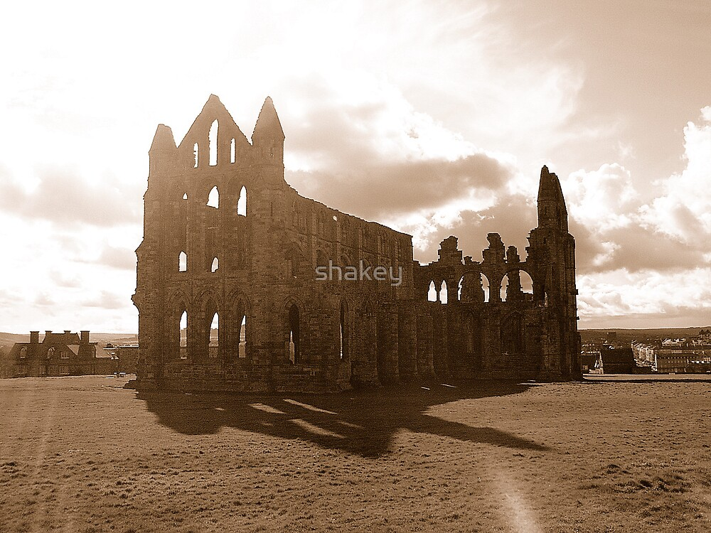 Whitby Abbey by shakey