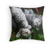 my whole world Throw Pillow