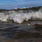 Wave by Nicholas Gray