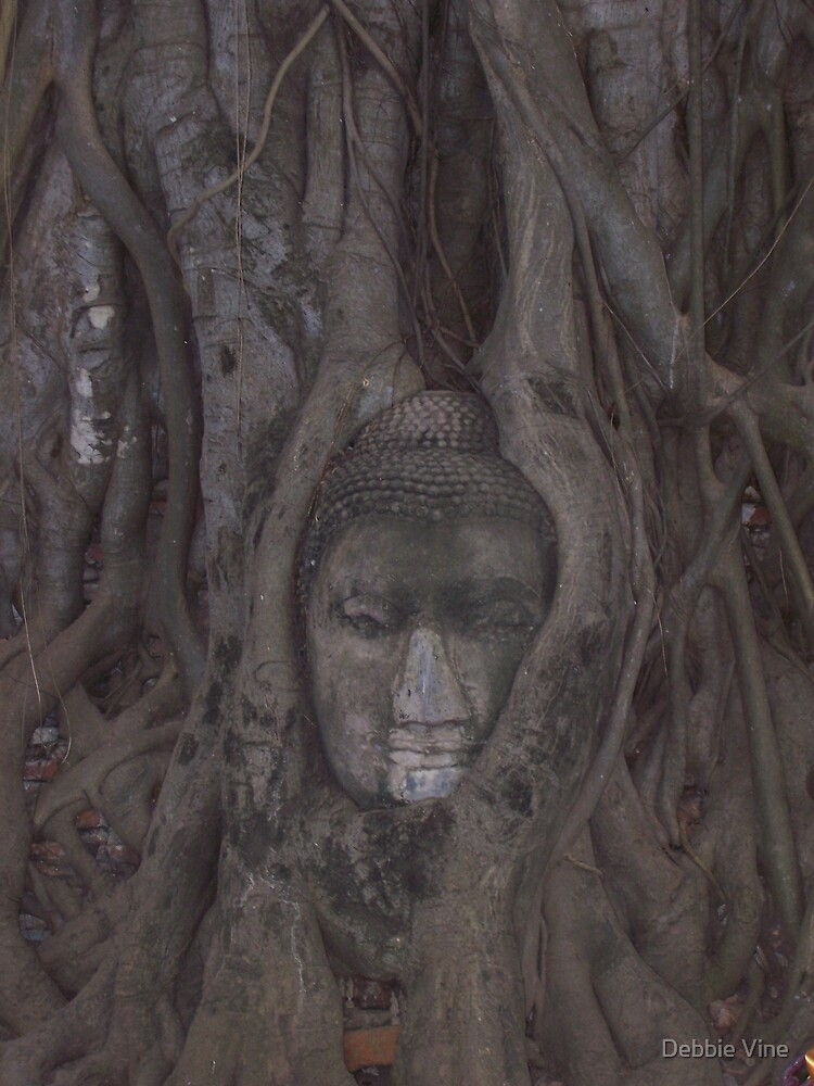 Carved Budda by Debbie Vine